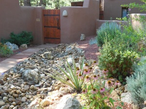 Dry stream bed & courtyard xeriscape